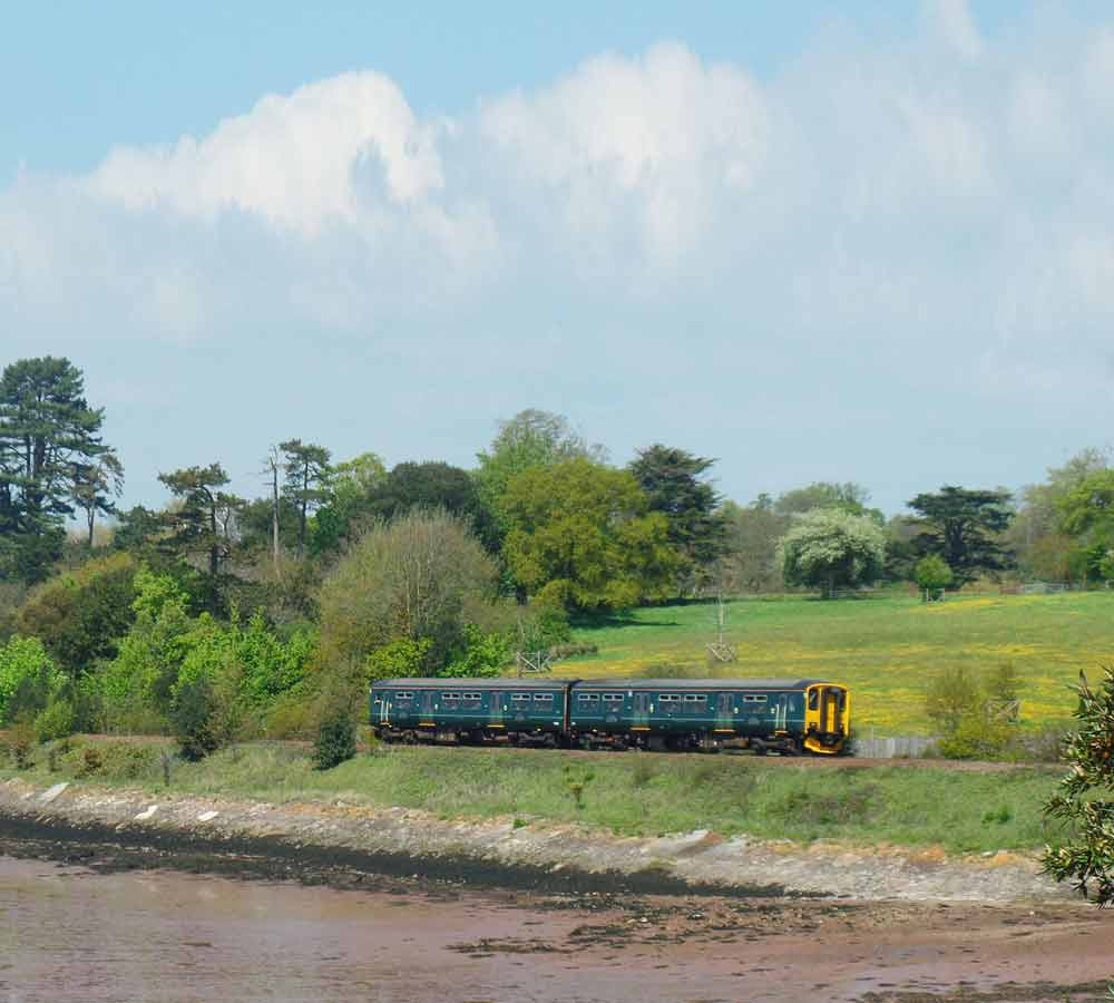 Train on Avocet Line