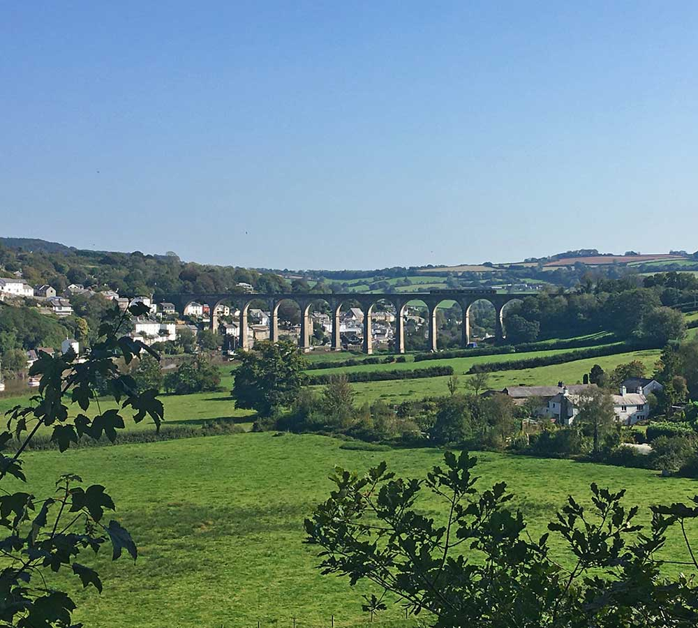 Calstock viaduct as seen from Cotehele woods