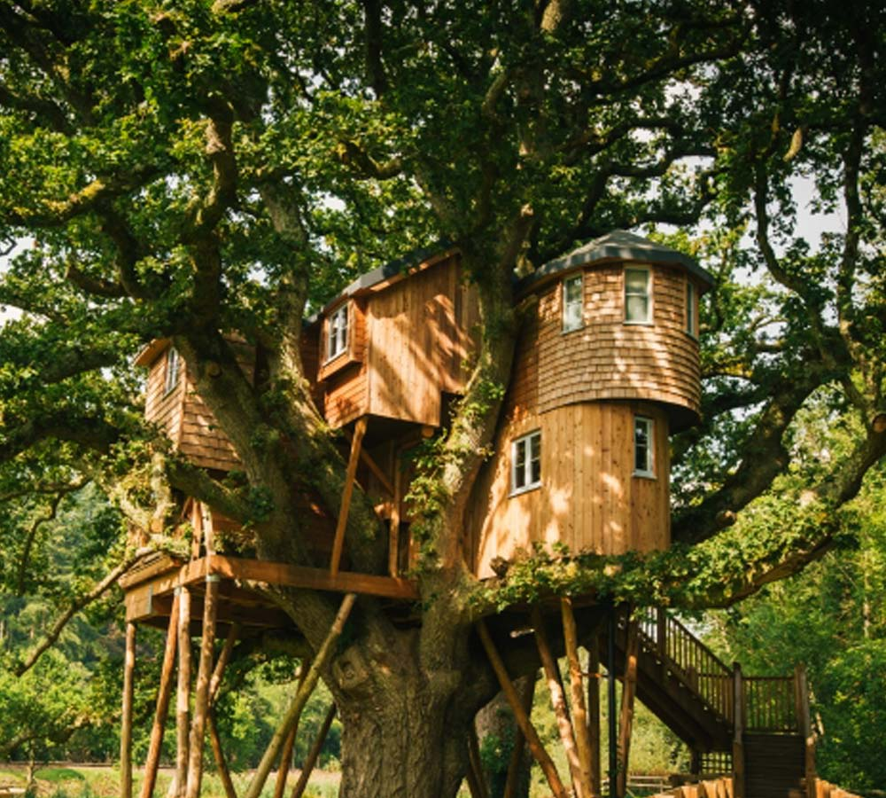 Luxury treehouse at Fox and Hounds Hotel