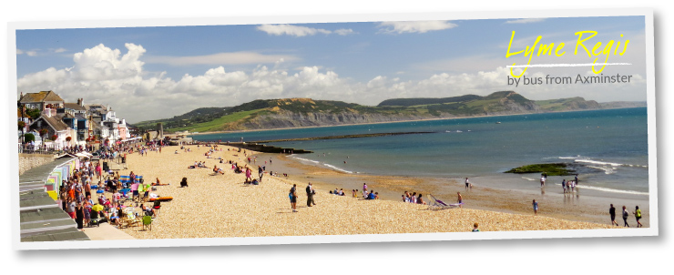 Lyme Regis - visit by bus from Axminster