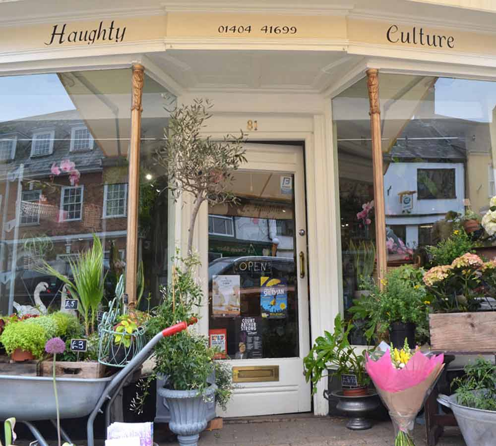Haughy Culture - shop in Honiton