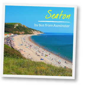 Visit Seaton by bus from Axminster
