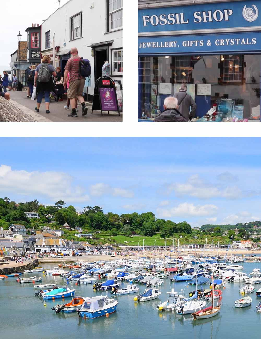 Lyme Regis collage showing busy street, fossil shop and harbour