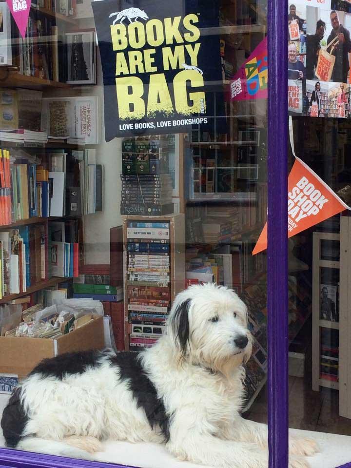 Quayside Bookshop, Teignmouth