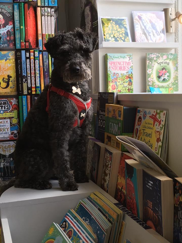 The Bookshop, Liskeard