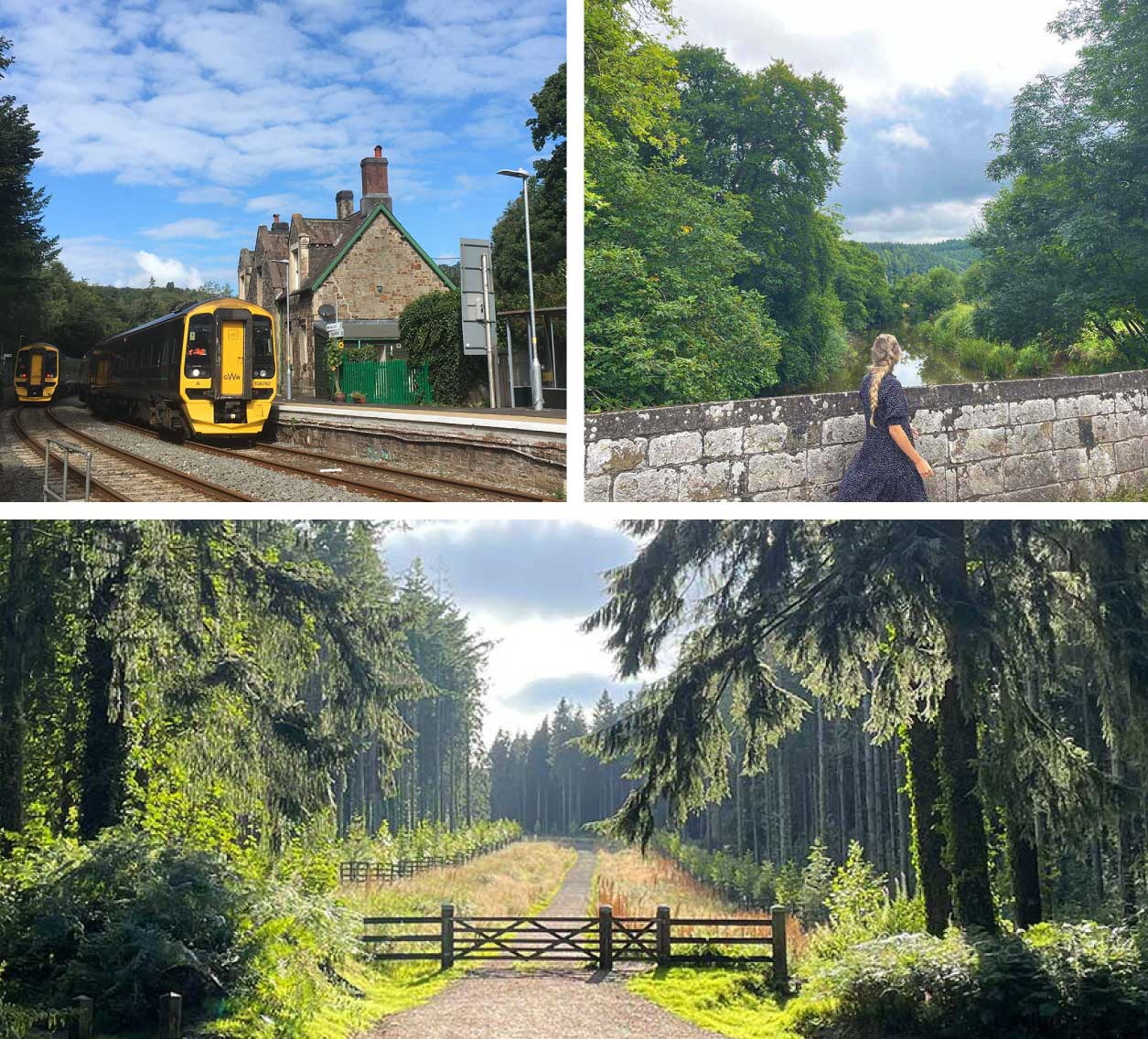 Eggesford collage - station, walk and woods